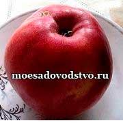 Яблоня Мелба Красная